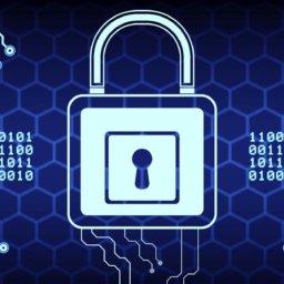 cyber insurance market report
